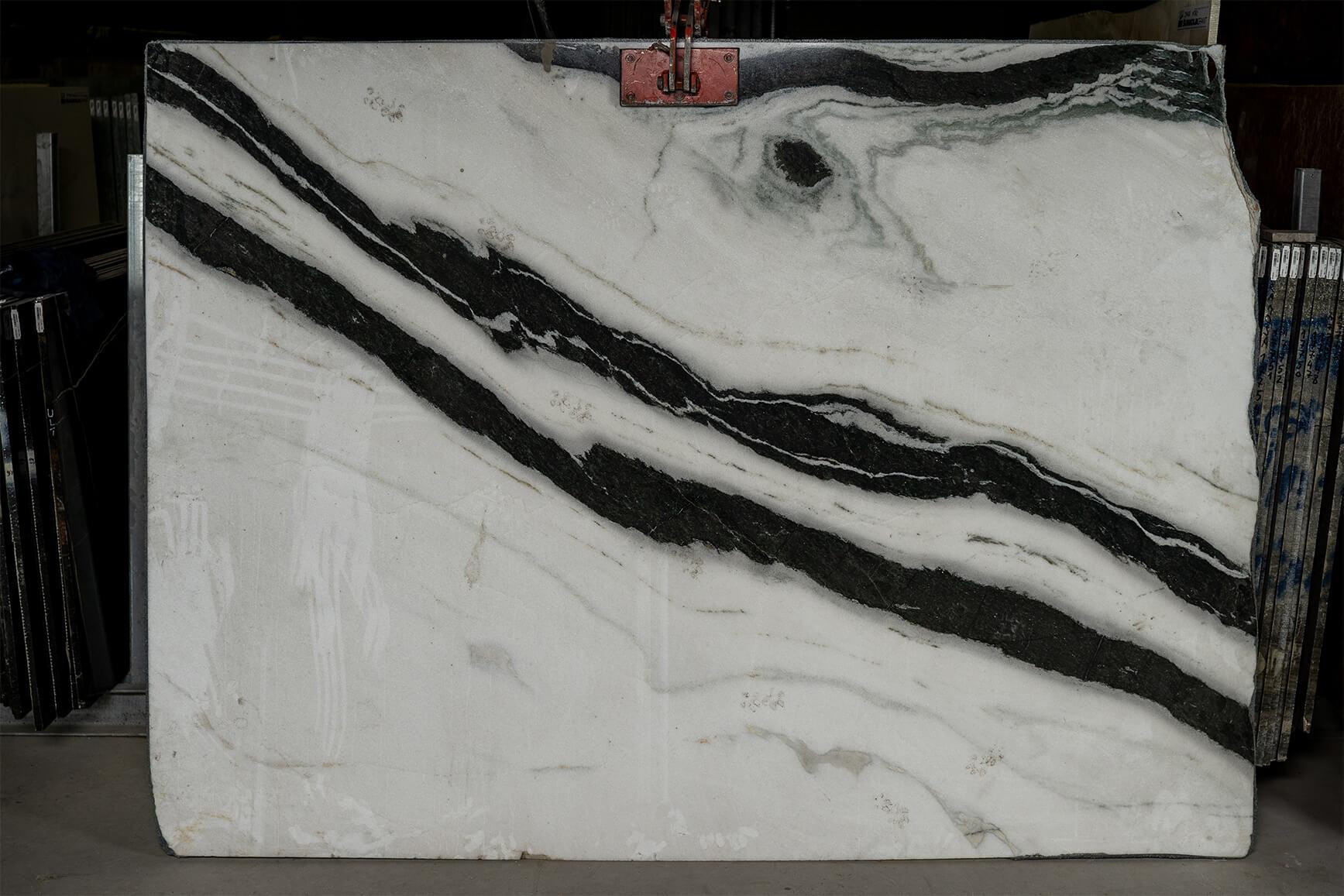 Zebra White